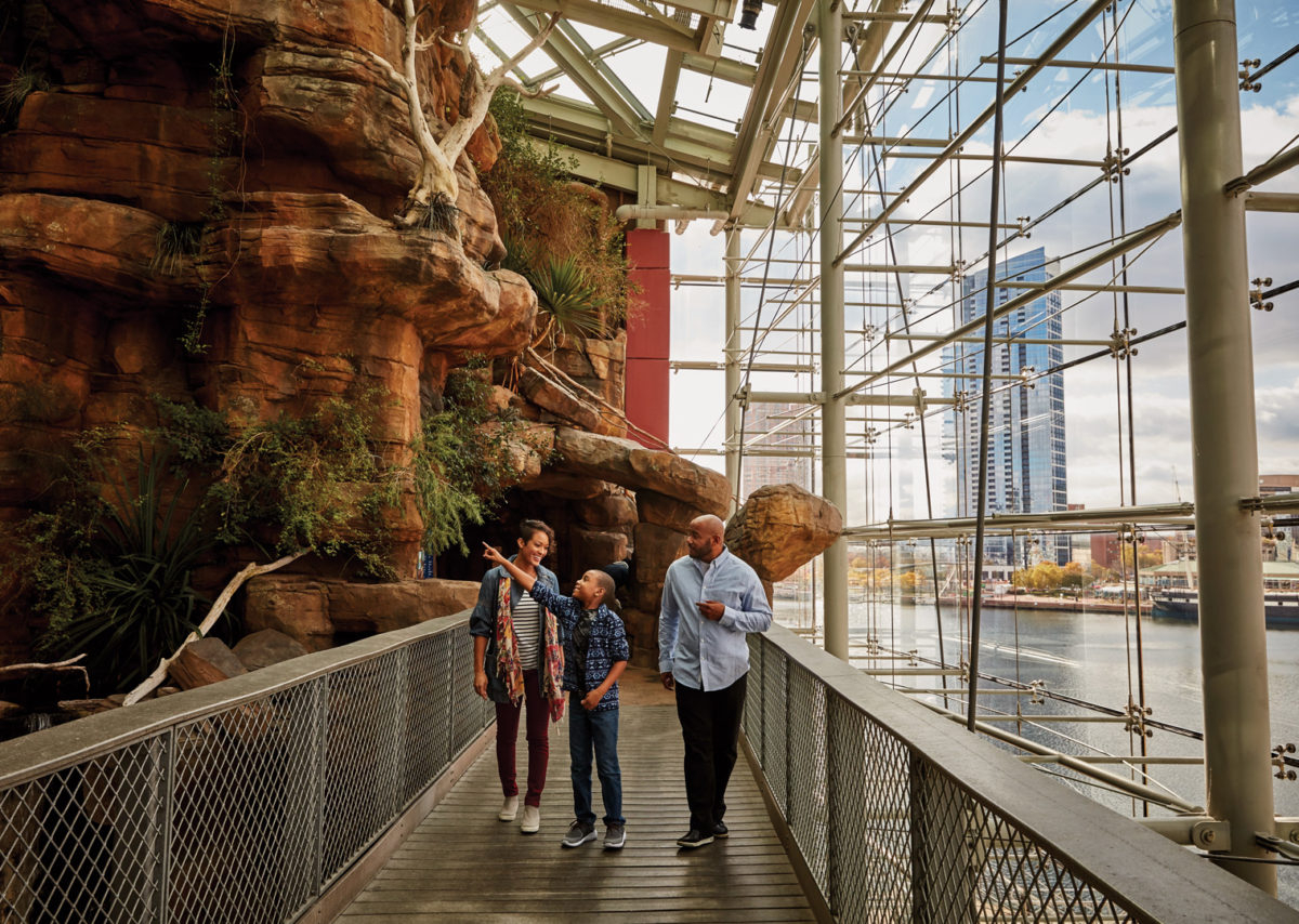 A family visits the National Aquarium in Baltimore.