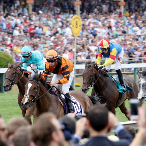 Preakness stakes horses.