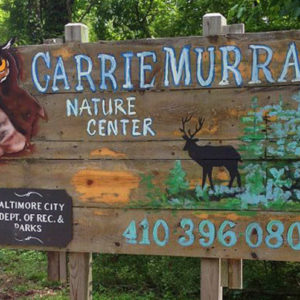 Carrie Murray Nature Center