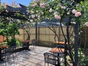Bodhi outdoor patio